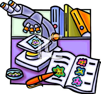 How to write a scientific report biology